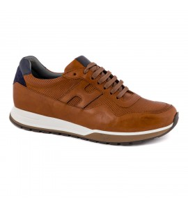 Damiani Ανδρικό Sneaker 1702 Ταμπά Νεες παραλαβες